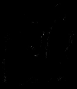 Logo008_Altenpflege